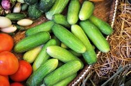 Pályázat az élelmiszeripari vállalkozásoknak!